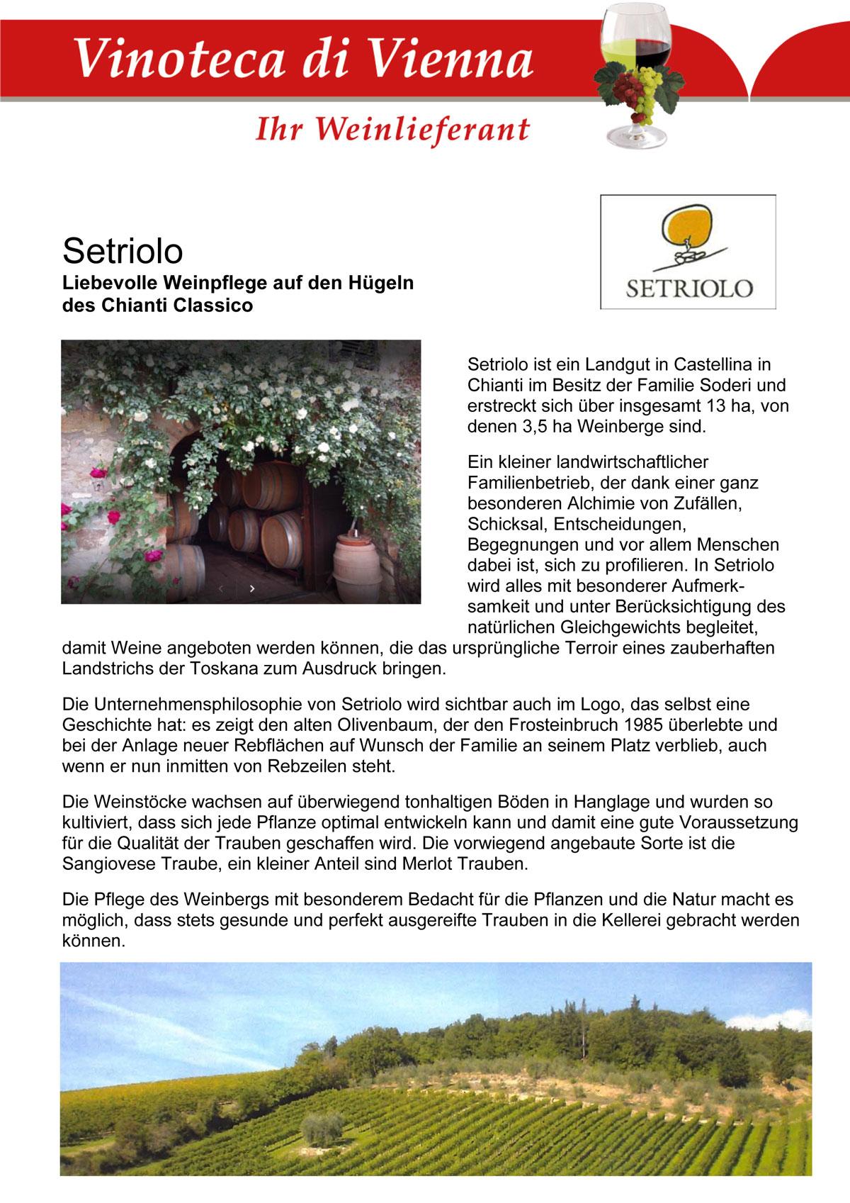 Setriolo, Italien, Toskana, Castellina, Liebevolle Weinpflege auf den Hügeln des Chianti Classico